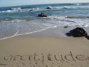 gratitude21