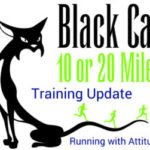 Black Cat Week 2 Wrap Up